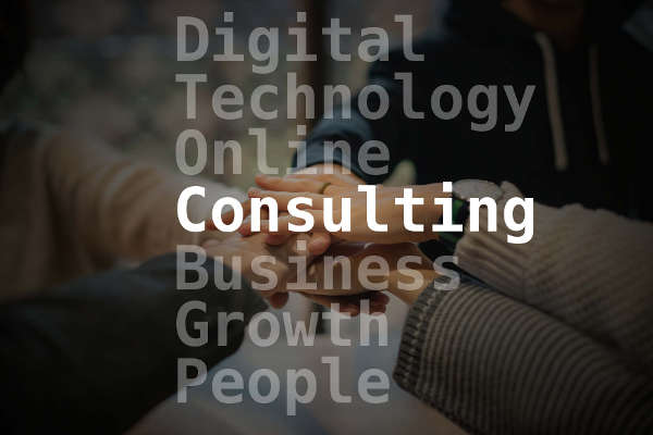 Working with a Consulting Services Company
